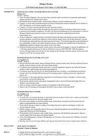 Planner Resume Sample Senior Demand Planner Resume Samples Velvet Jobs 12