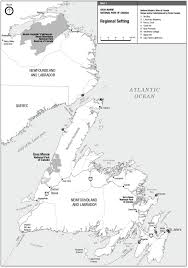 Gros Morne National Park Of Canada Draft Management Plan Gros