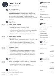 Professional Cv Template 24 CV Templates Create Your Professional CV in 24 Minutes 1