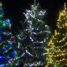 480 Christmas Tree Lights Amos 480 Led 48m String Fairy Lights Indoor Outdoor Christmas