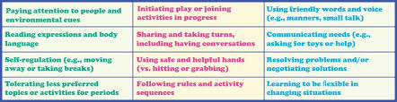 Preferred Skills List Engaging Siblings To Build Social Skills A Relative Solution To A