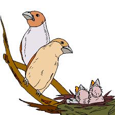 """Résultat de recherche d'images pour """"dessin nid et oiseaux"""""""