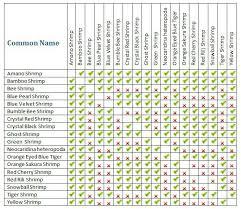 Compatible Tank Mates For Betta Fish Tank Mates Chart