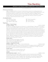 My New Resumes My Professional Resume Cute Resume Now Rojnamawarcom