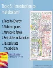 Nicholson Metabolic Pathways Chart Endocrine Metabolism 5 Pptx Topic 5 Introduction To