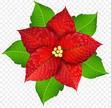 Weihnachtsstern Christmas Flower Clip Art Weihnachten Png