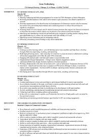 Ey Senior Consultant Resume Samples Velvet Jobs