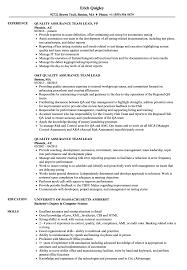 Resume For Team Leader In Bpo Quality Assurance Team Lead Resume Samples Velvet Jobs
