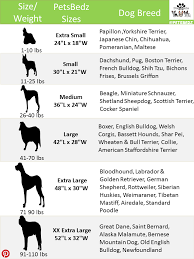Pet Clothes Size Chart Dog Bed Size Chart Because Every Dog Large And Small