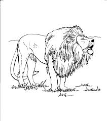 Small Picture Lion And Cub Coloring Page anfukco