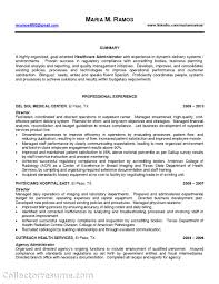 External Audit Sample Resume Add Block Quotes Essay Professional