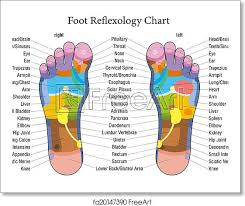 Reflexology Chart Free Art Print Of Foot Reflexology Chart Description