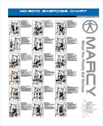 exercise chart for marcy home gym the fiat car