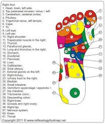 Left Foot Organ Chart Left Foot Reflexology Foot Map Foot Reflexology Reflexology