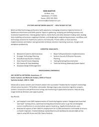 Business Analyst Responsibilities Resume Top Creative Essay