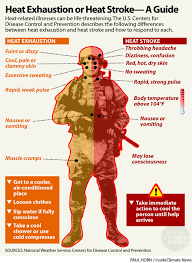 Infographic Heat Exhaustion Or Heat Stroke A Guide