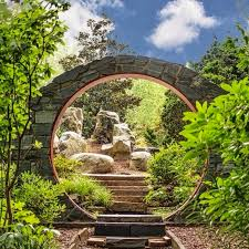 wander through the unc charlotte botanical gardens