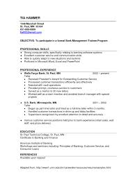 Resume Bank Resume Template For Study Title Examples Teller Sample