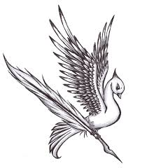 cute bird drawing tumblr. Wonderful Drawing Beautiful Bird Drawings How To Draw A Stepstep Easy With Pictures And Cute Drawing Tumblr