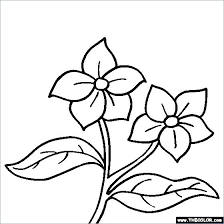 Printable Coloring Pages Flowers Printable Coloring Pages For Adults