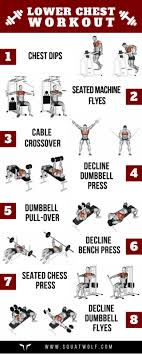 Dumbbell Exercises For Men Chart 8 Lower Chest Workouts For Defined Pecs Squat Wolf