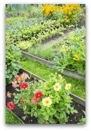 Small Picture Free Vegetable Gardening Software to Design Your Garden
