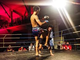 Marsh arts and fist boxing