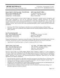 Federal Resume Template Berathen Com