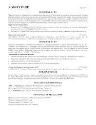 Yahoo Ceo Resume Resume Template Resume Templates Yahoo Template