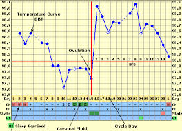 Ovulation Temp Chart Examples The Basics Of Bbt Charting
