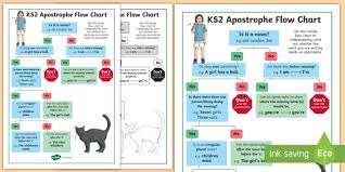 Animal Flow Chart Ks2 Ks2 Use Of Apostrophes Flow Chart Poster Spag Punctuation