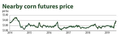 5 Year Corn Price Chart Corn Prices Soar As U S D A Slashes Crop Forecast 2019 06