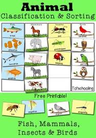 diurnal animals list for kids. Brilliant List Animal Classification And Sorting Activity To Diurnal Animals List For Kids