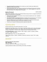 New Executive Resume Examples Resume Samples Doc New Executive