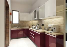 carpenter kitchen cabinet en carpenter ants in kitchen cabinets