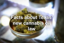 License Are You - Is Texas Need Here Know To People 10 Things Antonio Sell Grow Marijuana San Prepping Express-news
