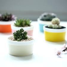 small plant pots garden supplies colorful basic small garden flower pots planters ceramic desktop office home small plant pots