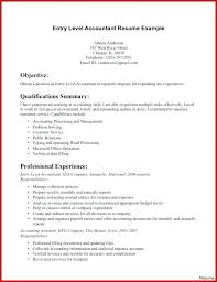 Accountant Resume Format Cool Inspiration Resume Junior Accountant Junior Accountant Resume Sample