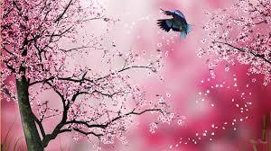 awesome view sakura free hd widescreen