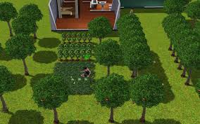 when you learn to garden properly in the sims 3 you can make farms that
