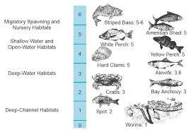 Dissolved Oxygen Criteria Chart Water Pollution