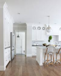 White Kitchen Paint Alaskan White Granite And Sherwin Williams Sea Salt House Ideas