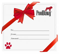 Pool Cue Gift Card Gift Certificate For Pool And Billiard