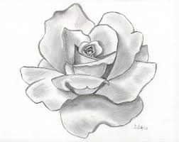 Small Picture Angel Drawing Of Pencil Sketches rose tattoo designs pencil
