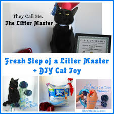 fresh step of a litter master a diy cat toy