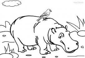 Hippo Coloring Pages Printable Animal Coloring Pages Pinterest