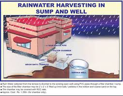 auick newsletter no chennai successful story rainwater harvesting in sump and well
