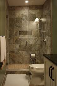 Small Picture Walk in shower in the basement bathroom great for kids and