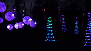 elegant enchanted garden of lights with rock city s enchanted garden of lights the dancing forest