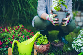 spring is almost in bloom or it will be if you prep your garden properly the ground is still cold but it won t be for much longer which is why now is